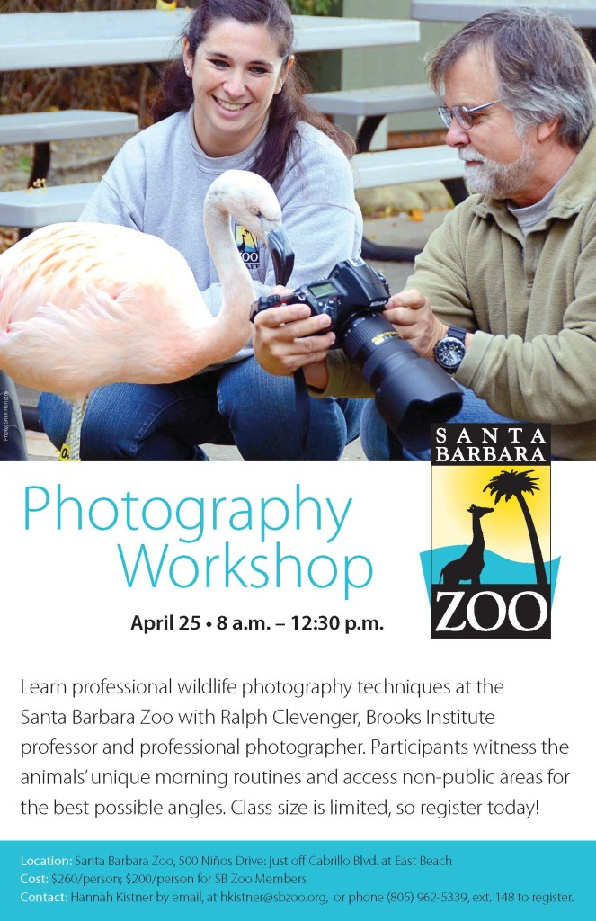 SBZoo Workshop